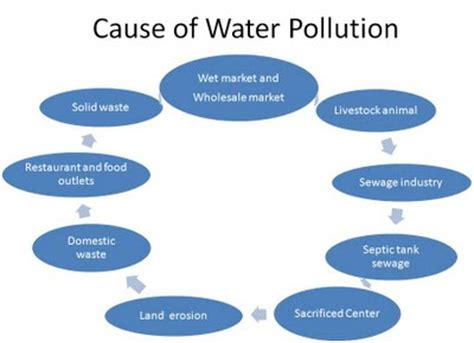 Water Pollution Essay Examples Kibin